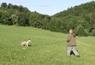 Stopy Goran z Deštné hory ( 1 rok - 5 měsíců )